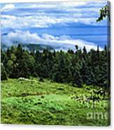 Bay Of Fundy From Fundy National Park Canvas Print