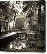 Bayou Evening Canvas Print