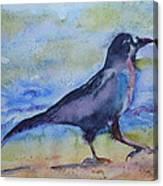 Bayside Strut Canvas Print