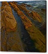Beach 23 Canvas Print