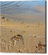 Beach And Rippled Water. Canvas Print