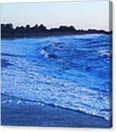 Beach Back Wash Canvas Print