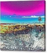 Beach Blindness Canvas Print