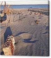 Beach Brick Canvas Print