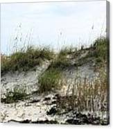 Beach Dune Canvas Print