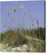 Beach Dune Pixelated Canvas Print