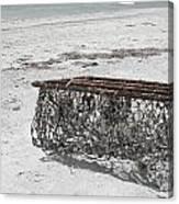 Beach Finds Canvas Print