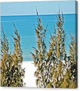 Beach Front View Canvas Print