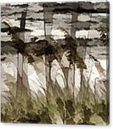 Beach Grasses Canvas Print