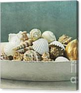 Beach In A Bowl Canvas Print