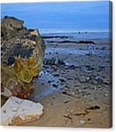 Beach Landing Canvas Print