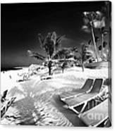 Beach Lounging Canvas Print