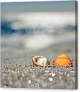 Beach Lovers Canvas Print