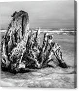 Beach Monster 2 - Outer Banks Bw Canvas Print