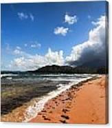 Beach Of Color Canvas Print