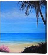 Beach Path Canvas Print