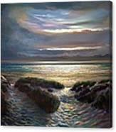 Beach Paths Canvas Print