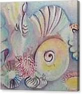 Beach Shack And Sea Shells 1.3 Canvas Print