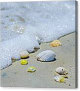 Beach Treasures Canvas Print