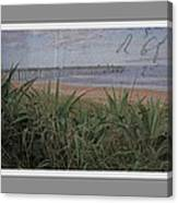 Beach Writing Canvas Print