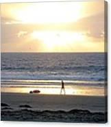 Beachcomber Encounter Canvas Print