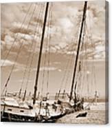 Beached Schooner Canvas Print