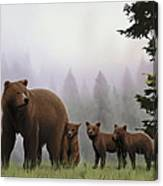 Bear And Cubs Canvas Print