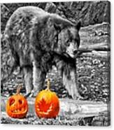 Bear And Pumpkins Too Canvas Print
