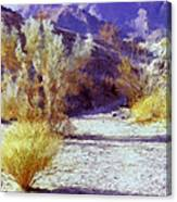 Bear Creek Trail II Canvas Print