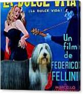 Bearded Collie Art Canvas Print - La Dolce Vita Movie Poster Canvas Print