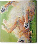 Bear's Backscratch For Phone Cases Canvas Print