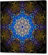 Beartooth Pass Kaleidoscope Canvas Print