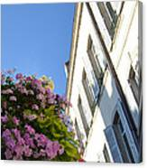 Windows With Flowers Canvas Print