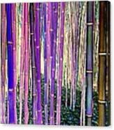 Beautiful Bamboo Canvas Print
