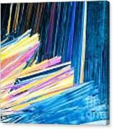 Beautiful Benzoic Acid  Microcrystals Abstract Art Canvas Print