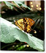 Beautiful Blessings Canvas Print