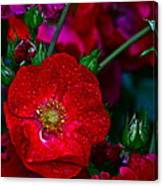 Beautiful Bouquet Canvas Print