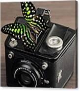 Beautiful Butterfly On A Kodak Brownie Camera Canvas Print