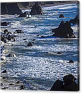 Beautiful California Coast Canvas Print