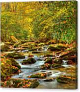 Beautiful Fall View In Tennessee Canvas Print
