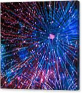 Beautiful Fireworks  2 Canvas Print