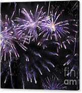 Beautiful Fireworks 7 Canvas Print