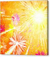 Beautiful Fireworks Canvas Print