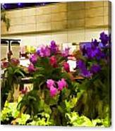 Beautiful Flowers Inside The Changi Airport Canvas Print