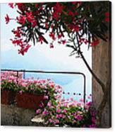Beautiful Flowers Of Ravello Italy Canvas Print