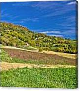 Beautiful Green Hill With Vineyard Cottages Canvas Print