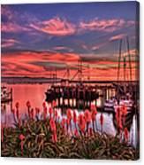 Beautiful Harbor Canvas Print