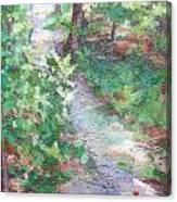 Beautiful Hike Canvas Print