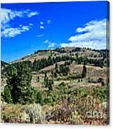 Beautiful Hillside Canvas Print