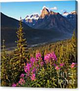 Rocky Mountains Sunset Canvas Print